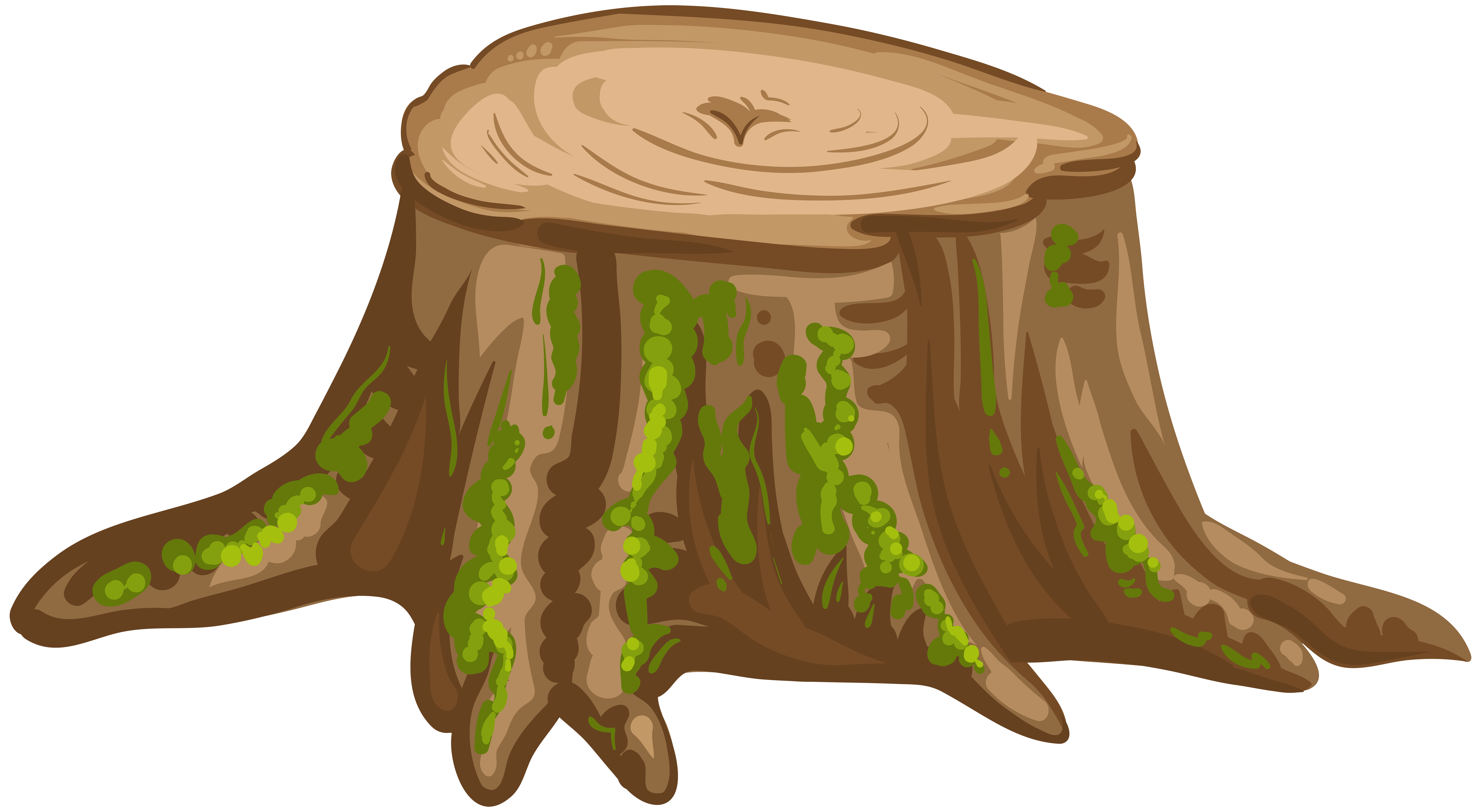 jpg transparent Stump drawing. Photography clip art png