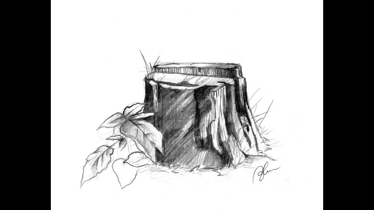 clip art freeuse library Pencil tree . Stump drawing