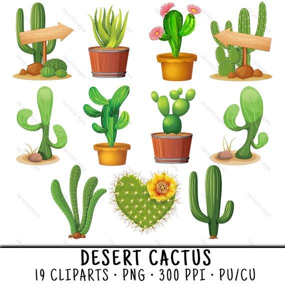 graphic transparent library Cactus clip art desert. Succulent clipart.