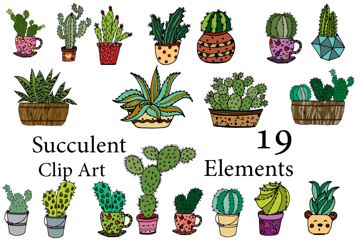 picture royalty free stock Succulent clipart. Vector .
