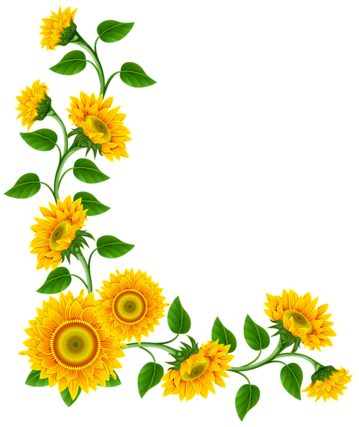 picture library stock Decoration png image fonts. Sunflower corner border clipart