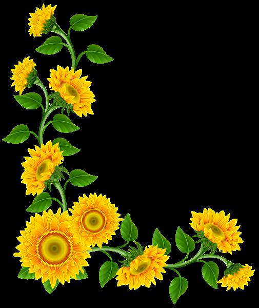jpg freeuse stock Sunflower Border Decoration PNG Clipart Image