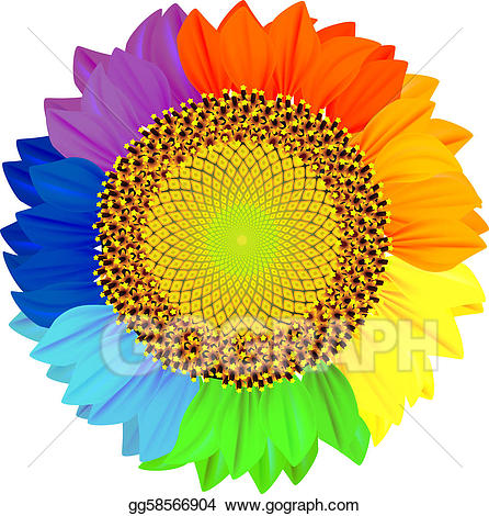 clipart free download Vector stock sunflower with. Sunflowers clipart colorful.
