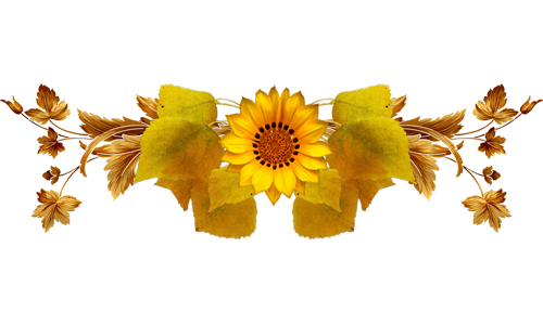 picture royalty free download Sunflowers clipart divider. Barres de separation ange