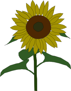clip royalty free library Sunflowers clipart public domain. Sun flower clip art