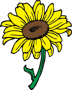 image transparent stock Sunflowers clipart public domain. Sunflower clip art at