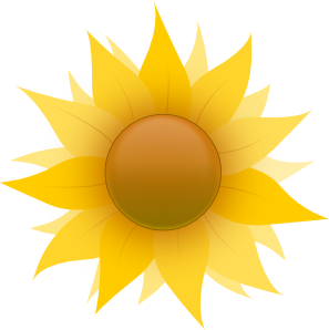 image transparent stock Sunflower clip art at. Sunflowers clipart public domain