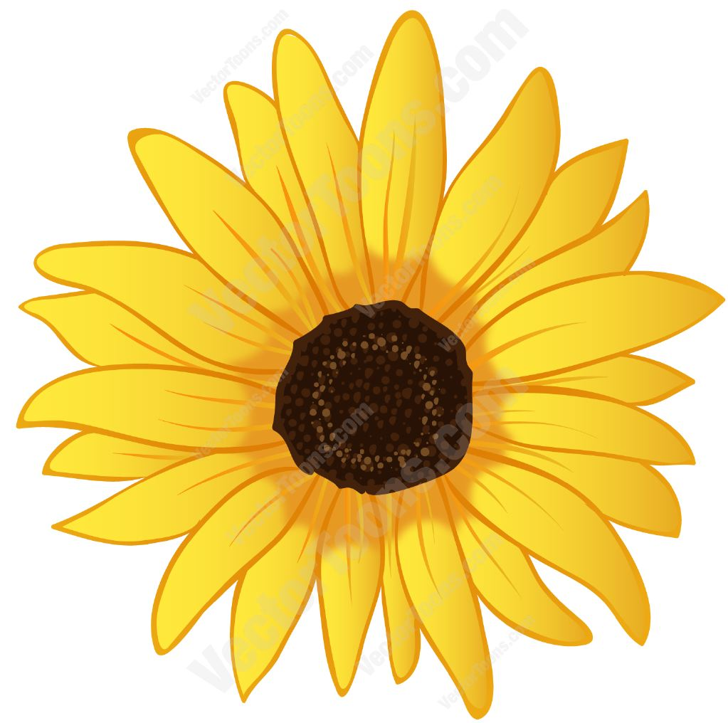 image library Sunflowers clipart swag. Royalty free sunflower png.