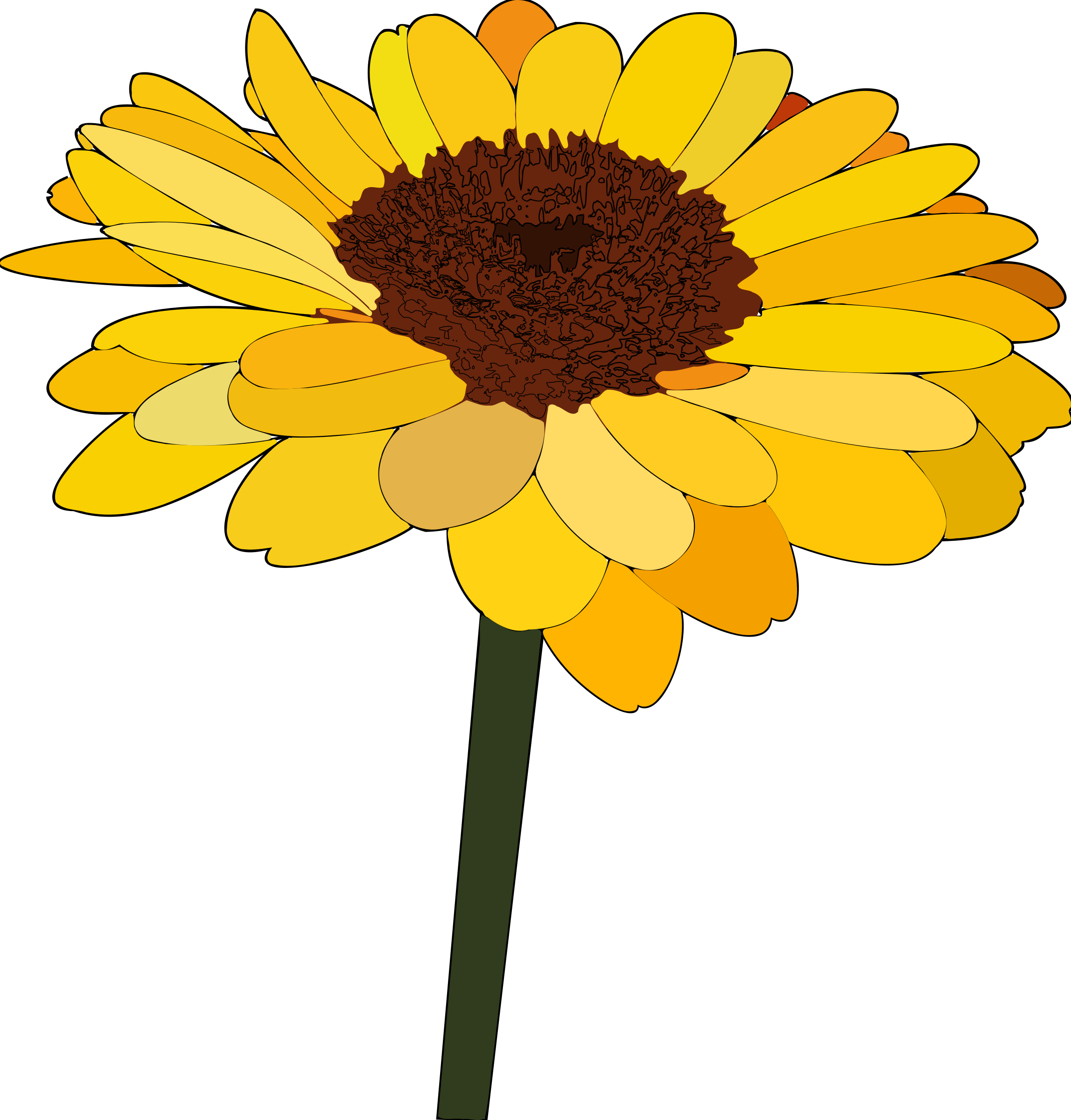 jpg freeuse  sunflower images photos. Sunflowers clipart thanksgiving.