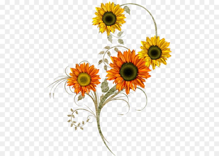 svg freeuse stock Sunflowers clipart thanksgiving. Day background design .