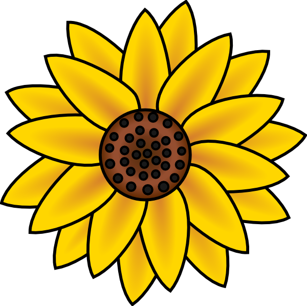 banner transparent stock Sunflower free collection download. Sunflowers clipart thanksgiving.
