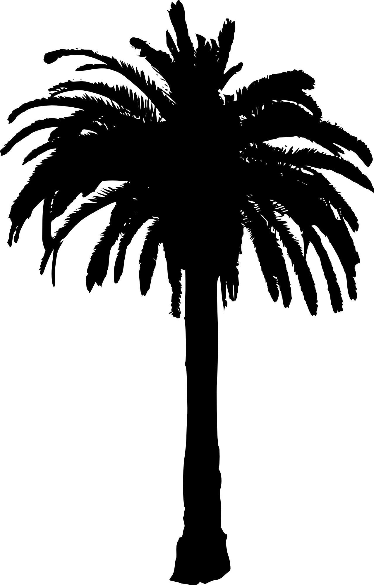 image black and white library Silhouette Palm Trees at GetDrawings
