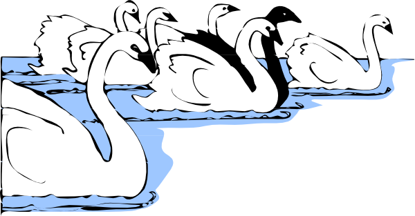 png freeuse download White And Black Swans Clip Art at Clker