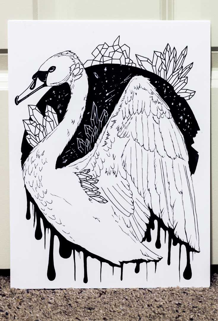 banner free download Swan drawings the most. Swans drawing beautiful