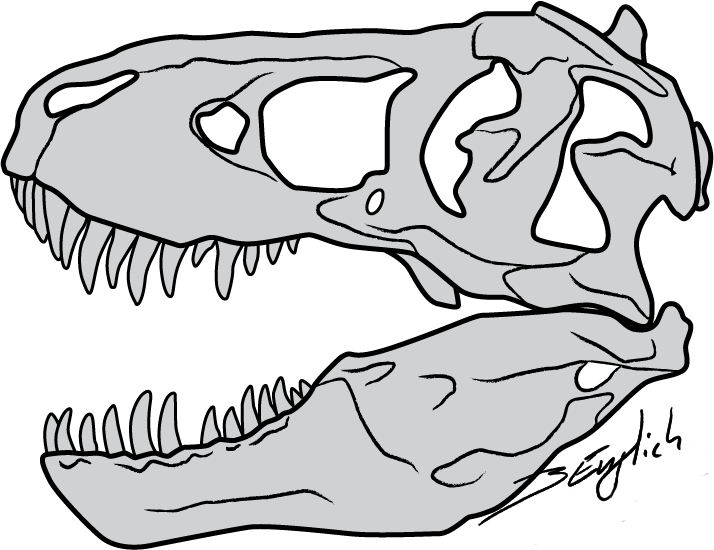 vector transparent download Clipart face t rex FREE for download on rpelm