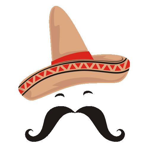 stock Playa Tacos