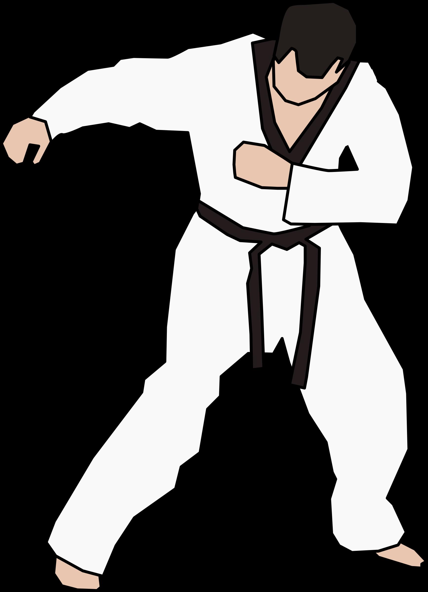 jpg freeuse stock Fighter big image png. Taekwondo clipart