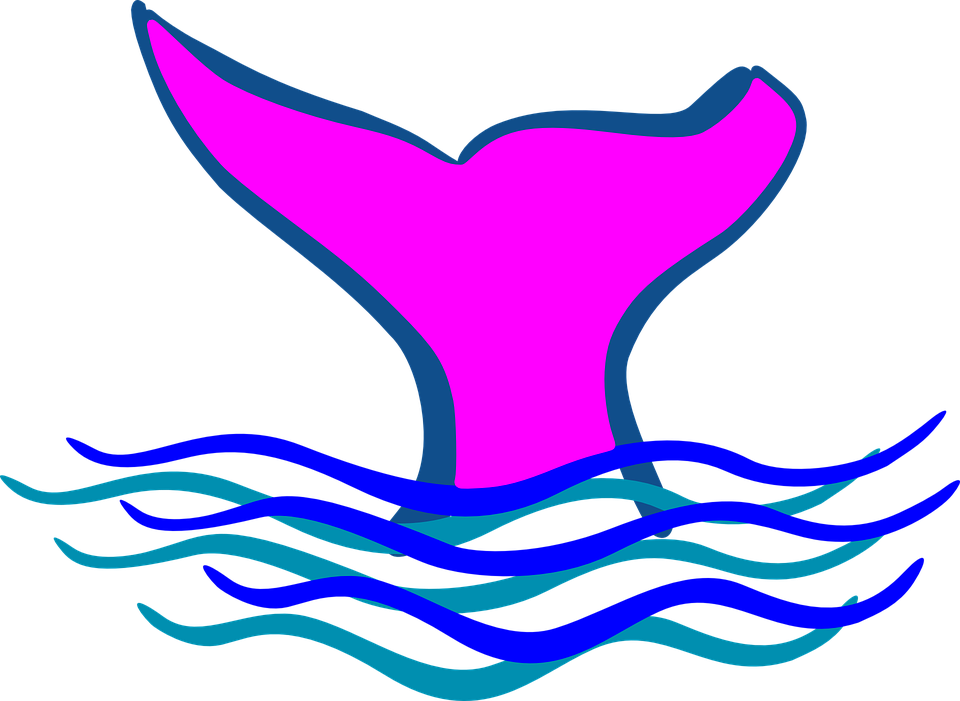 jpg transparent library Mermaid cutie free on. Tail clipart