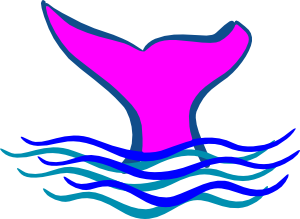 jpg freeuse library Tail clipart pink. Whale clip art at