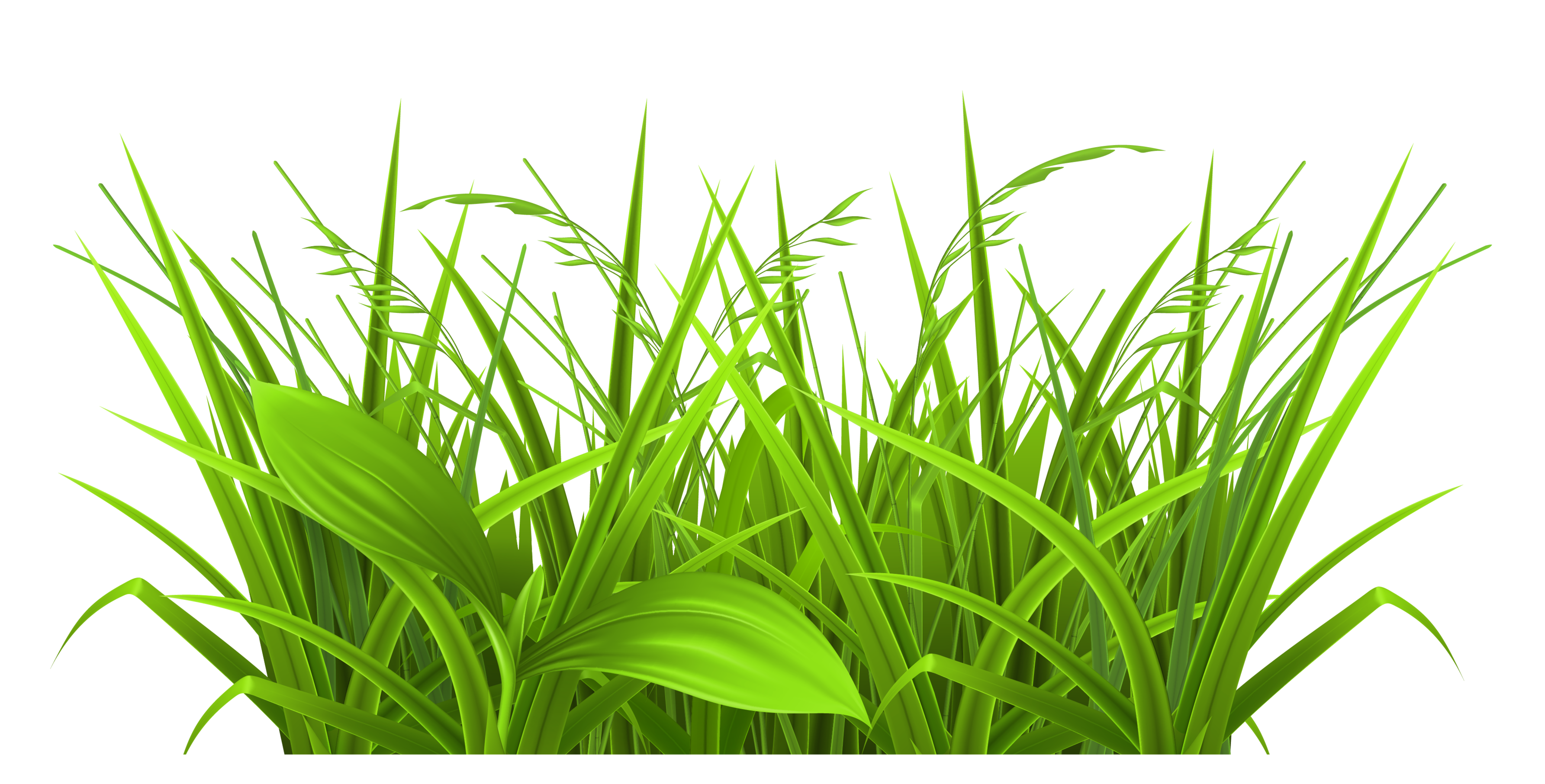 svg freeuse library Vector bushes grass. Silhouette free at getdrawings