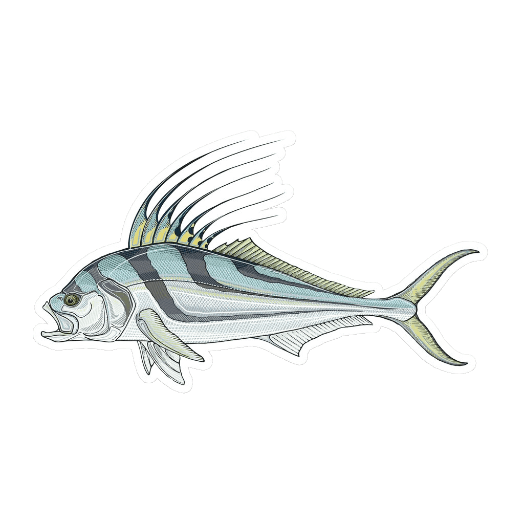 clip transparent download Casey Underwood Roosterfish