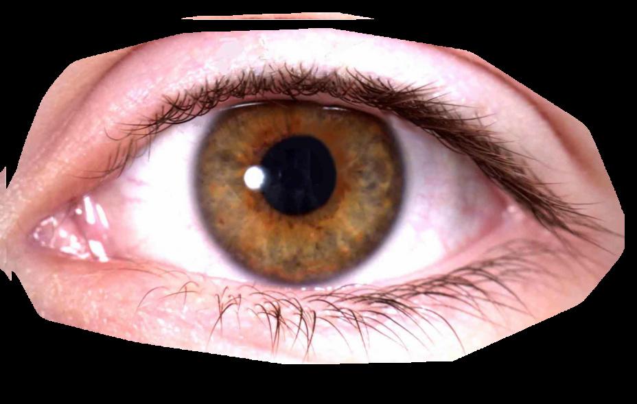 image Eyes PNG images free download