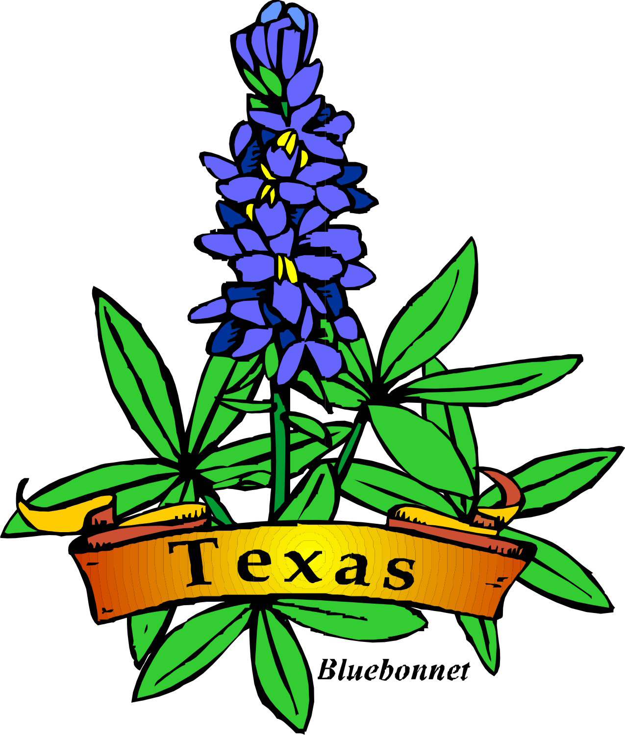 image free library Texas bluebonnet clipart. Theme day camp shac
