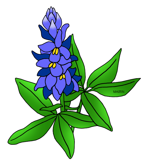 vector download Texas bluebonnet clipart. Cactus ranch library breakfast