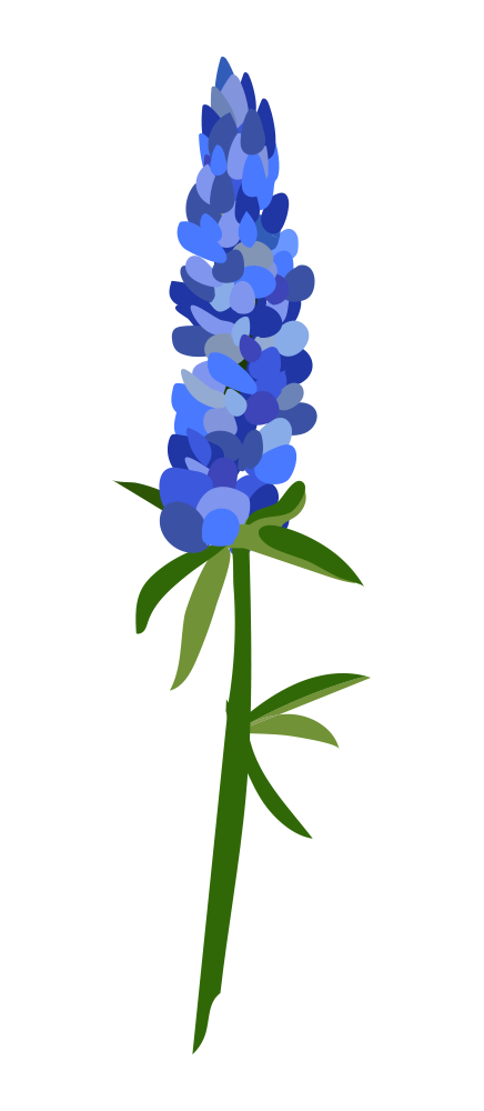 clip art stock Bluebonnet clipart at getdrawings. Bluebonnets drawing simple