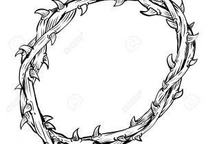 png library stock Crown of thorns sketch. Thorn drawing