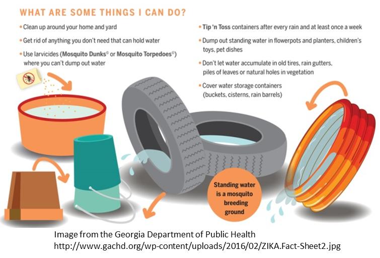 clip transparent Tires clipart mosquito breeding. Tire picture