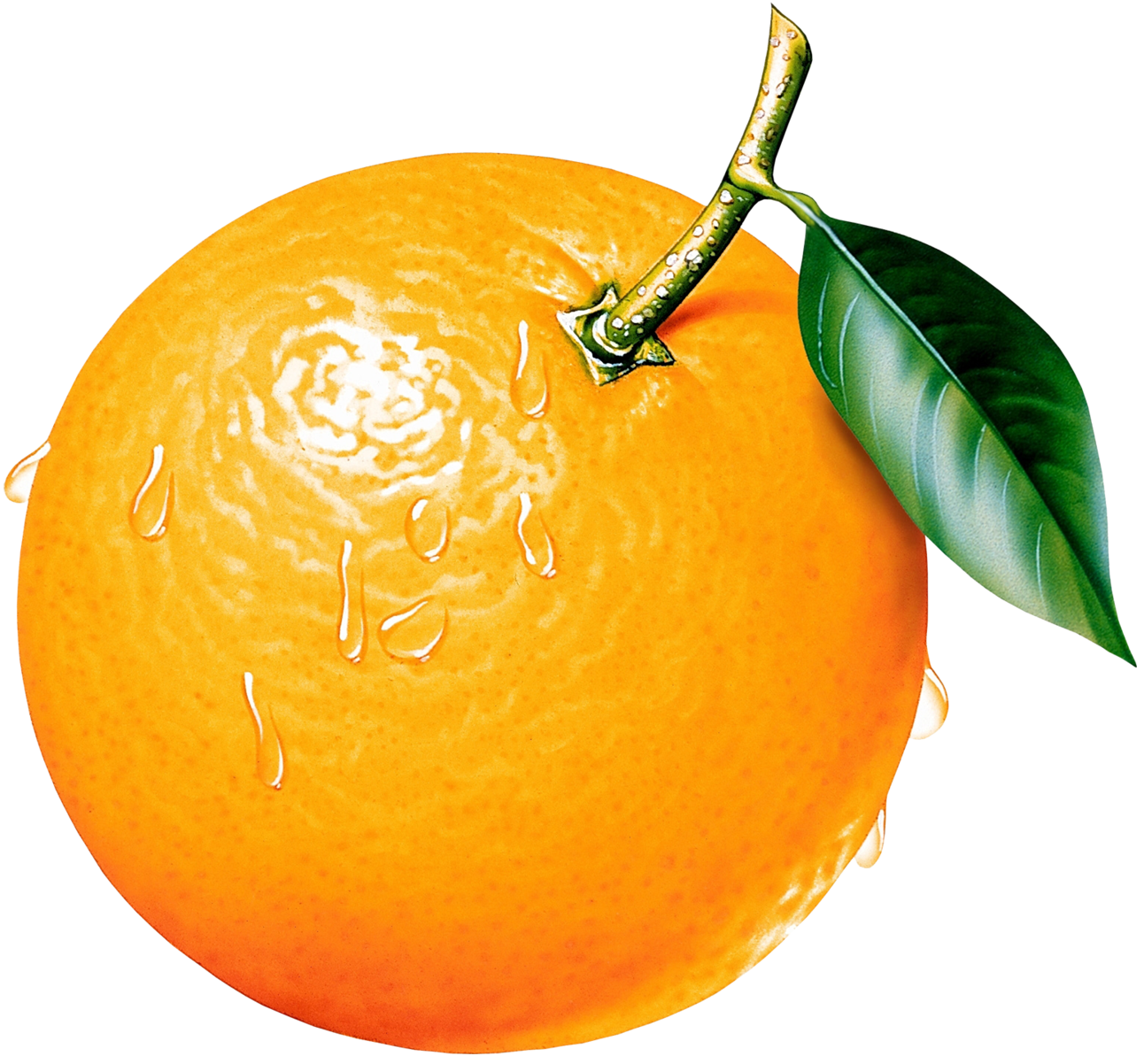 graphic library library Oranges clipart. Orange picture gallery yopriceville