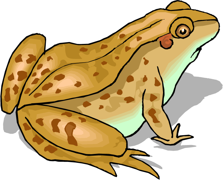 clipart free download Toad clipart. Top clip art free