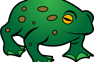 free stock Toad clipart. Stylish design frog and