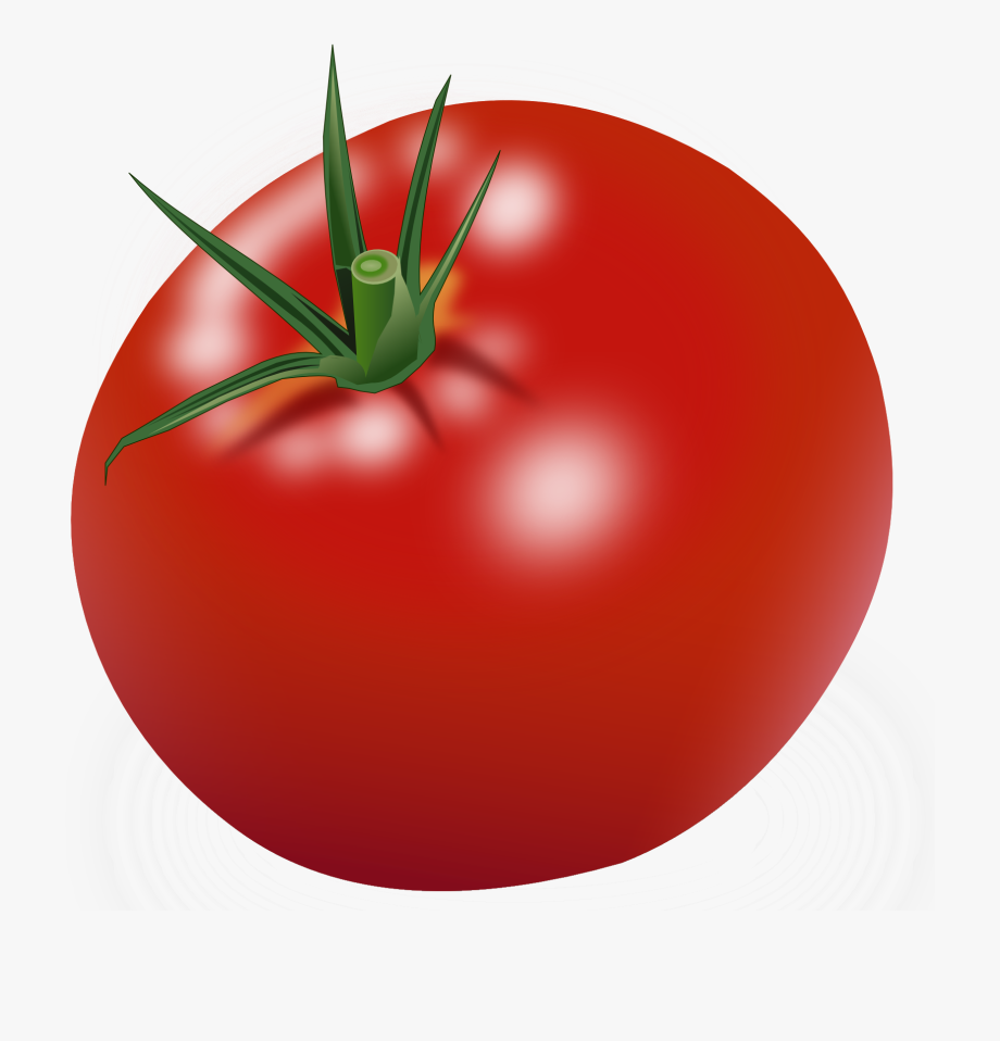 picture library download Tomatoes red free . Tomato clipart.