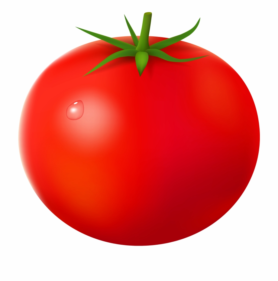 free stock Tomato clipart. No background pngtube .