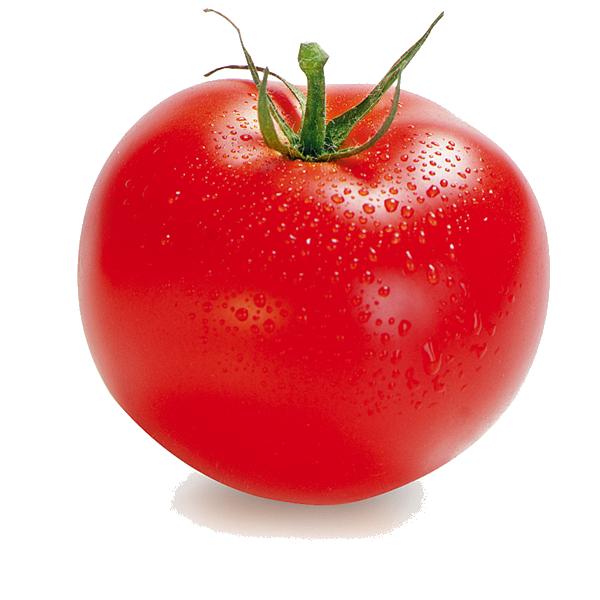 banner transparent stock Tomato PNG Transparent Images