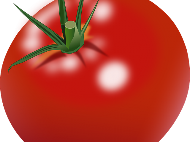 picture royalty free library Tomato frame free on. Tomatoes clipart kamatis