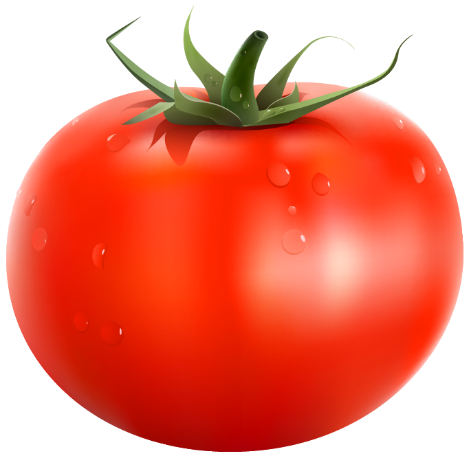 svg transparent download Tomatoes clipart kamatis. Fresh easy agro
