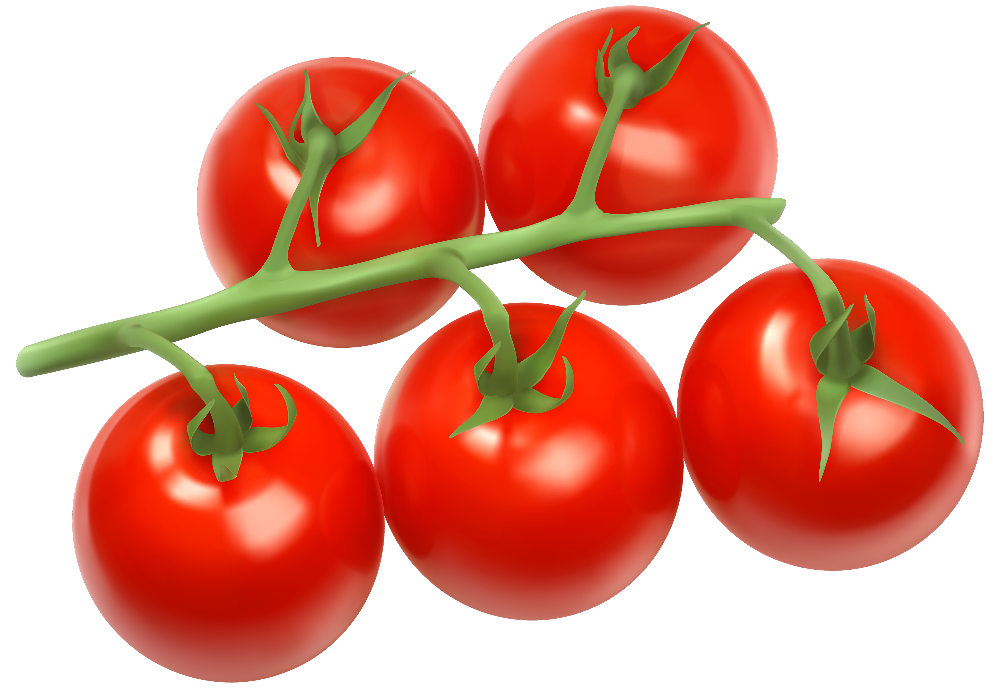 graphic royalty free Tomatoes clipart. Branch png best web.