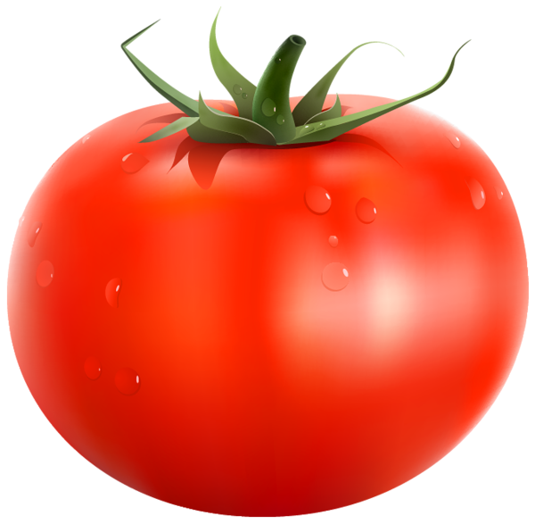 svg black and white stock Veggies clipart vegetable seed. Tomato png picture fruits