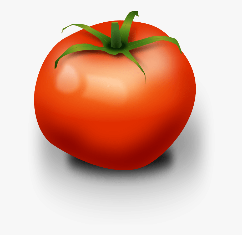 vector library Vegetable ripe tomato clip. Tomatoes clipart kamatis