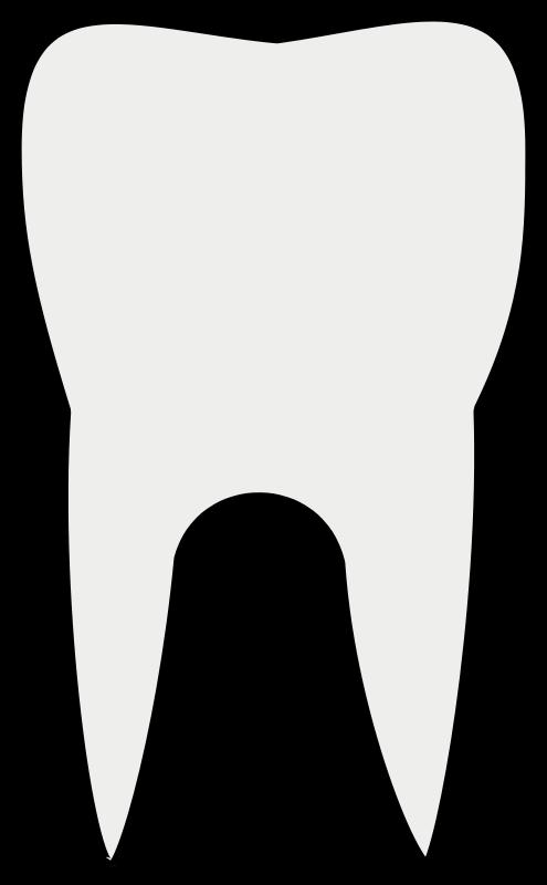 clipart transparent Clip art free panda. Tooth clipart