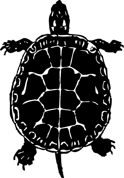 banner library stock Tortoise black and white clipart. Turtle clip art at