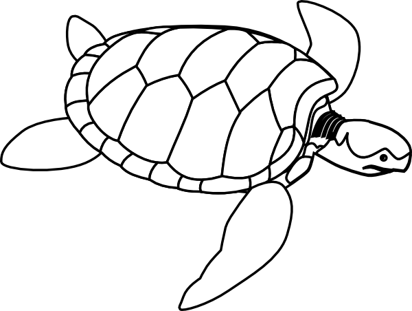 png Tortoise clipart black and white. Turtle outline clip art
