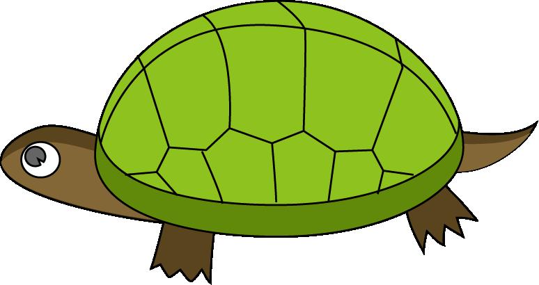 image freeuse . Tortoise clipart