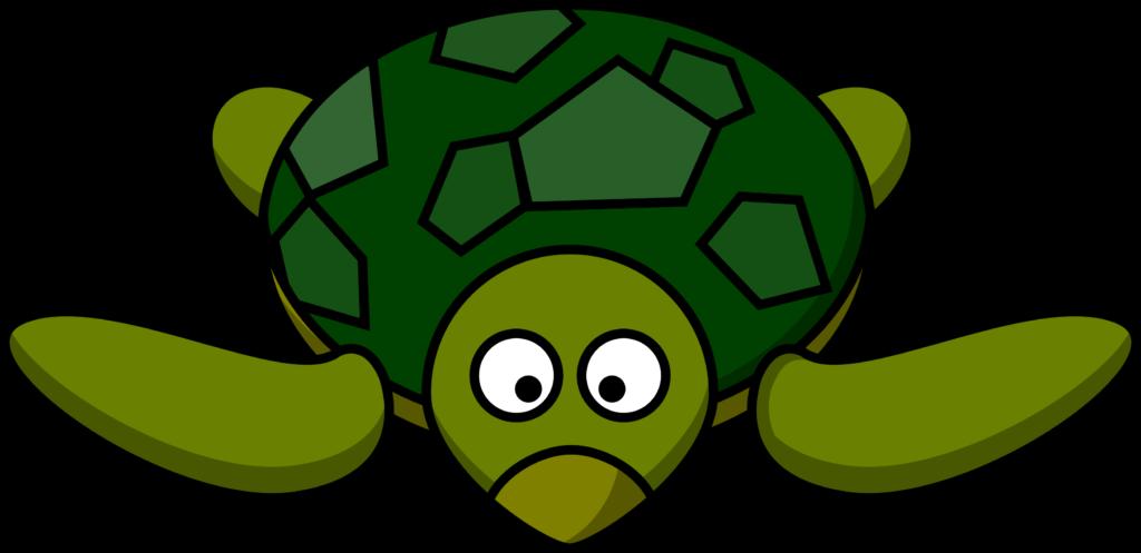 banner Tortoise clipart animal hawaiian.  turtle images free
