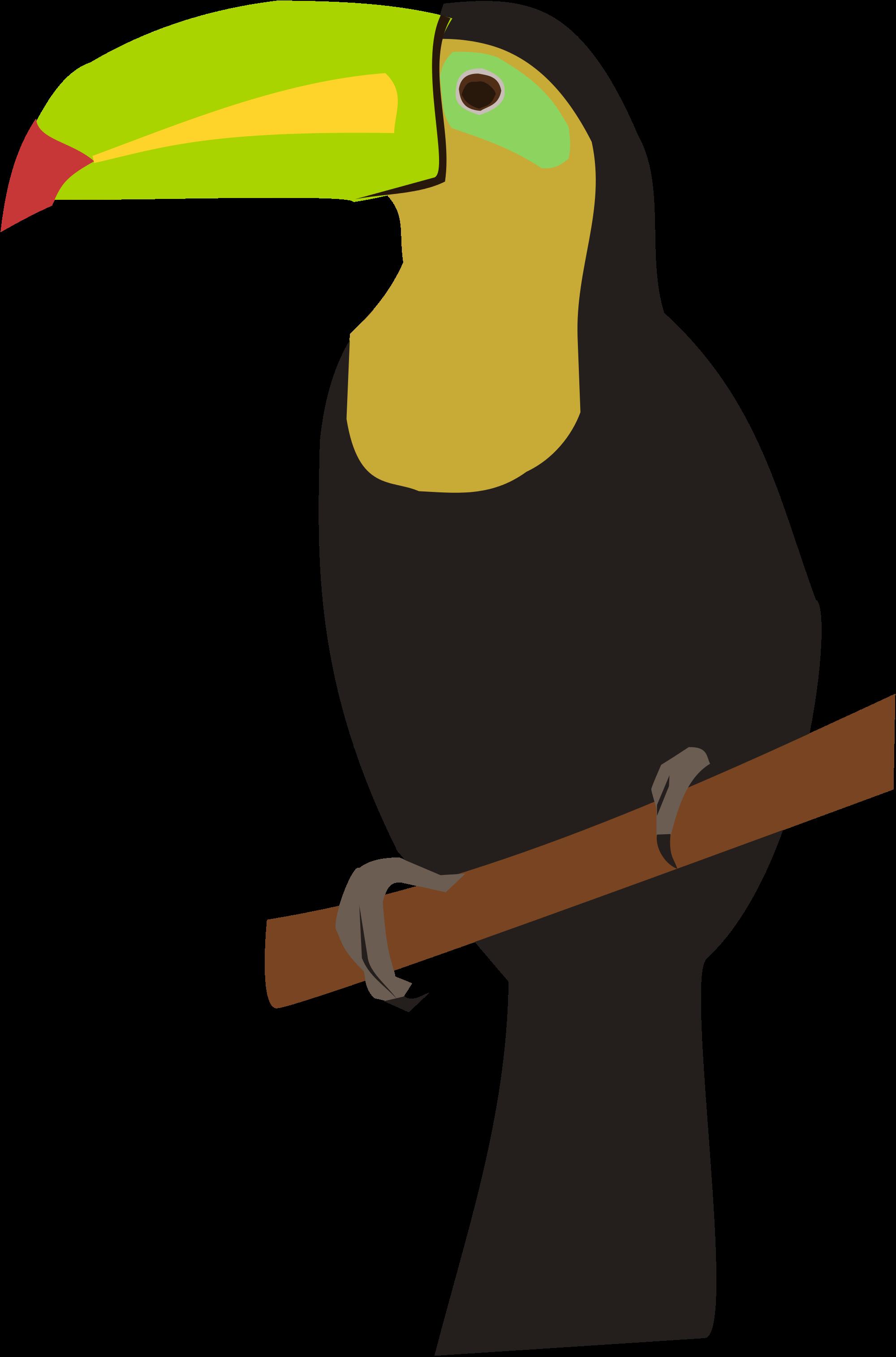 clip stock toucan vector svg #104973378