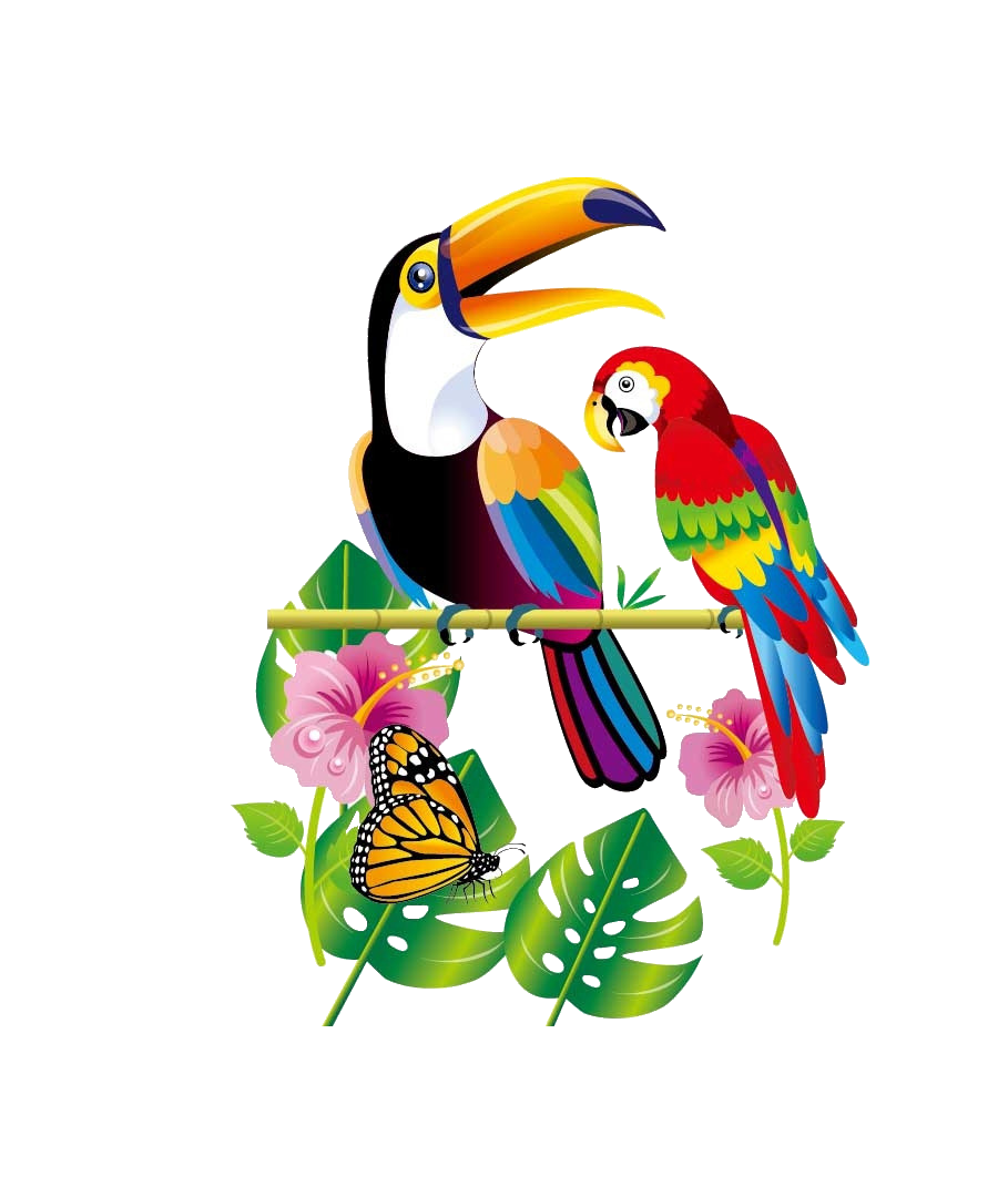 picture black and white stock Parrot Bird Toucan