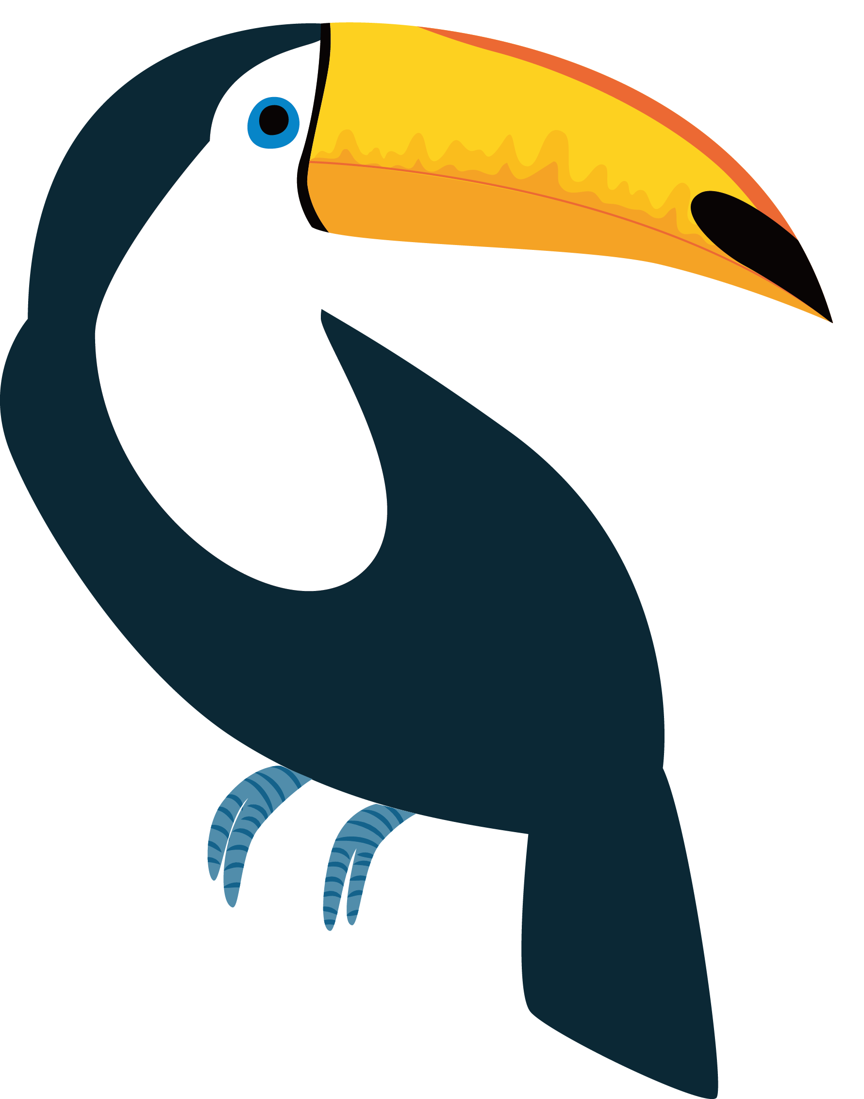 jpg transparent library Toucan Vector